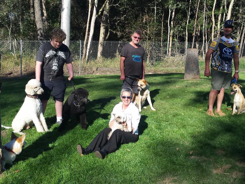 affordable-dog-obedience-classes-Brisbane